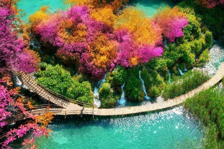 Plitvice Lakes National Park Tour (from Split and Trogir)